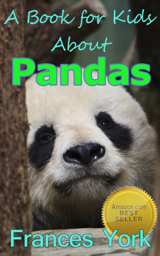 Teach your children about Pandas with this creative book.