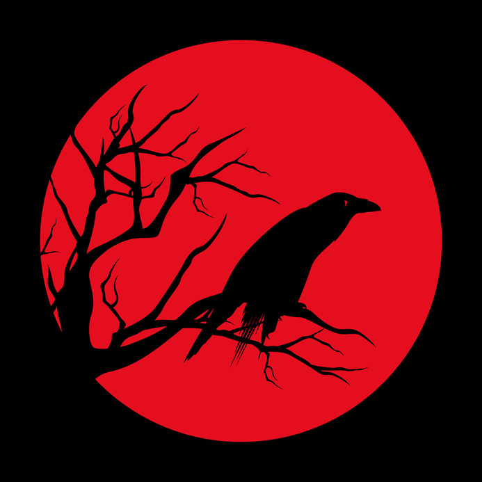raven bird ominous design