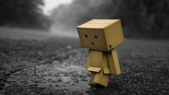 sad-danbo-in-the-rain-photography-hd-wallpaper-1920x1080-4653